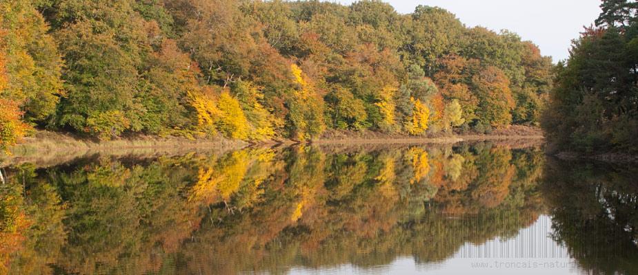 Automne à l'étang de Saloup